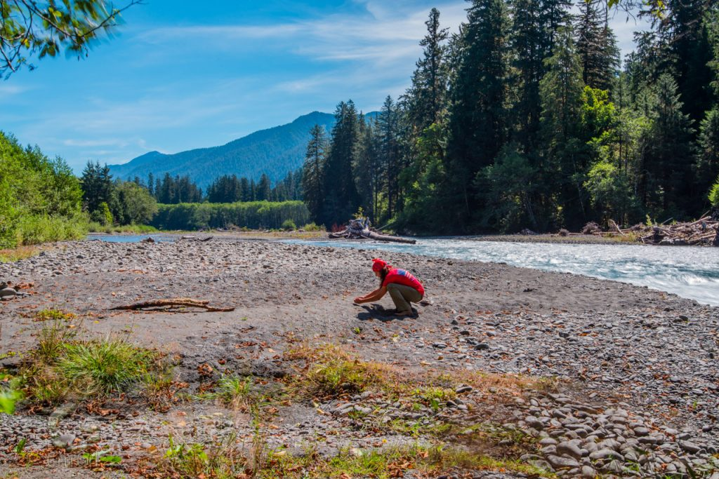 """CrtrGrl exploring for bugs along the Hoh River, Olympic National Park, WA. Photo by Scott McGee at <a href=""""http://www.underpressurephoto.com/"""">Under Pressure Photography</a>"""